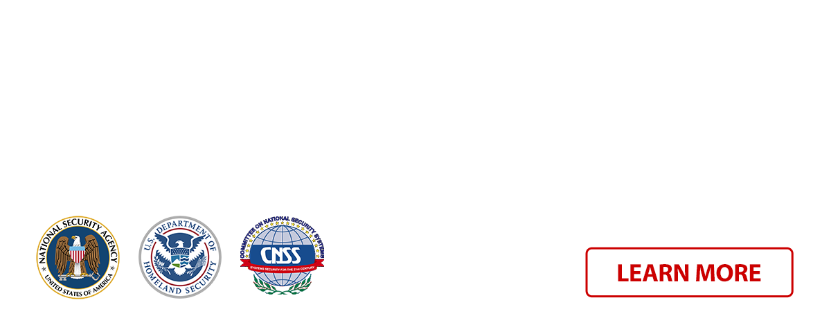 Bachelor's Degree in Cybersecurity